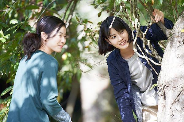Little_Forest-_Summer_&_Autumn-0006