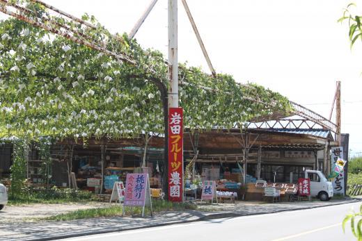 Iwata Fruit Farm
