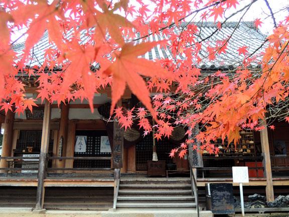 2014_matuoji04