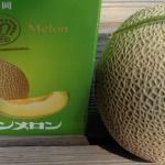 crown melon