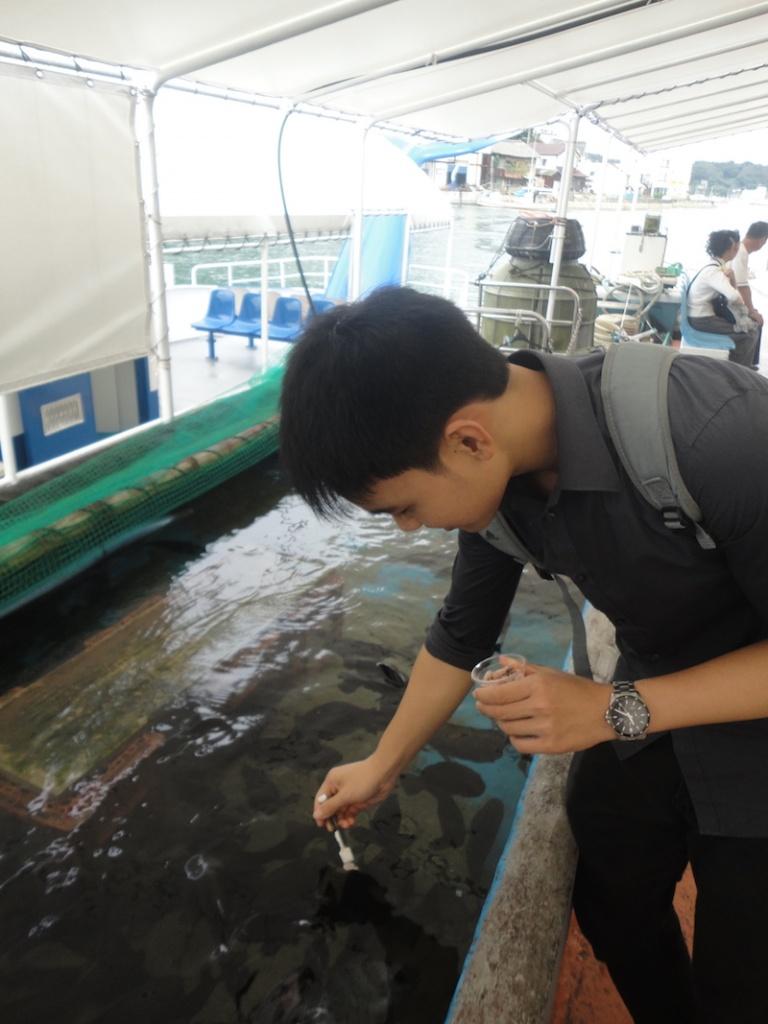 fish feeding 3