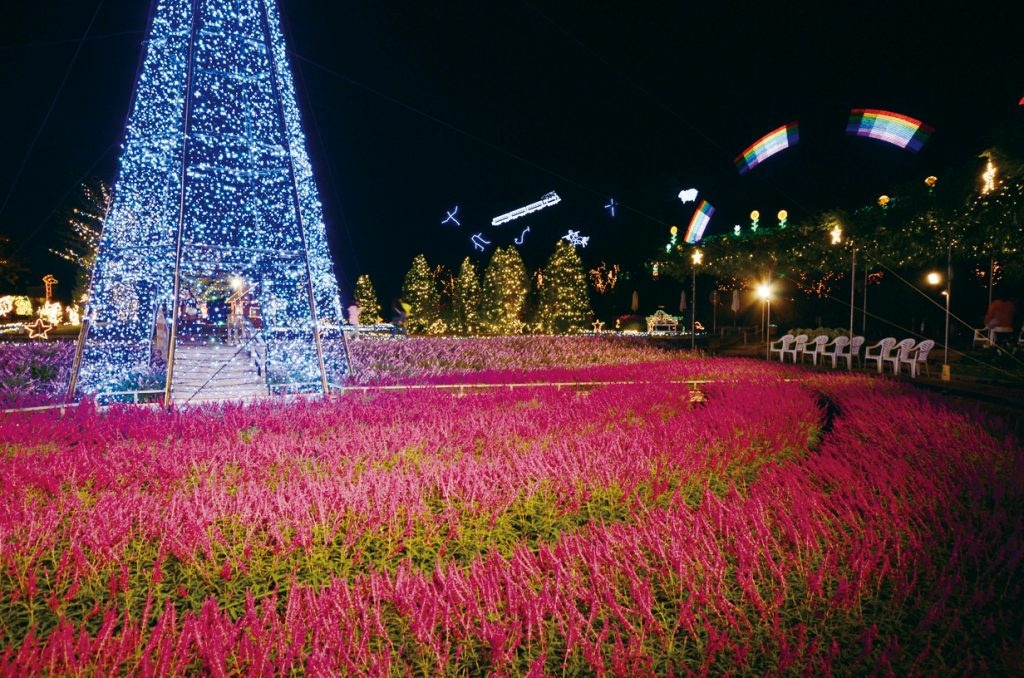 ashikaga-illumination-1