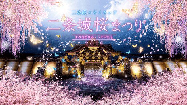 """พบกับการผสมผสานระหว่างมรดกโลกและศิลปะยุคปัจจุบันในงาน """"Nijo Castle Sakura Matsuri"""" จังหวัดเกียวโต"""