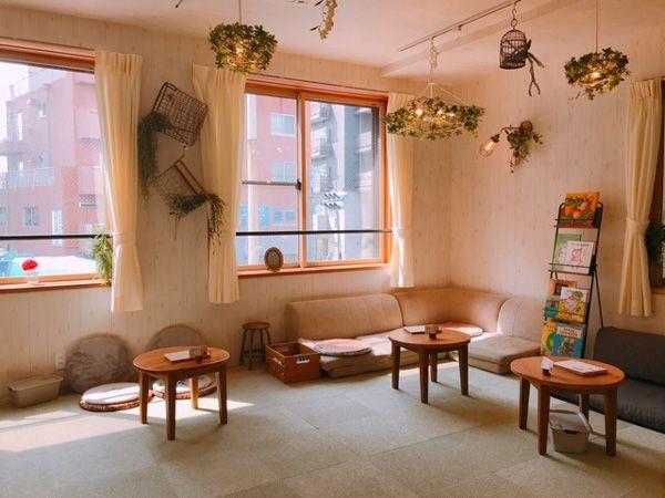 mipig-cafe-japan