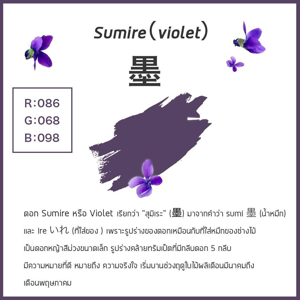"""ดอก Sumire หรือ Violet เรียกว่า """"สุมิเระ"""" (墨)"""