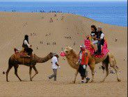 tottori Sand Dunes and The Sand Museum