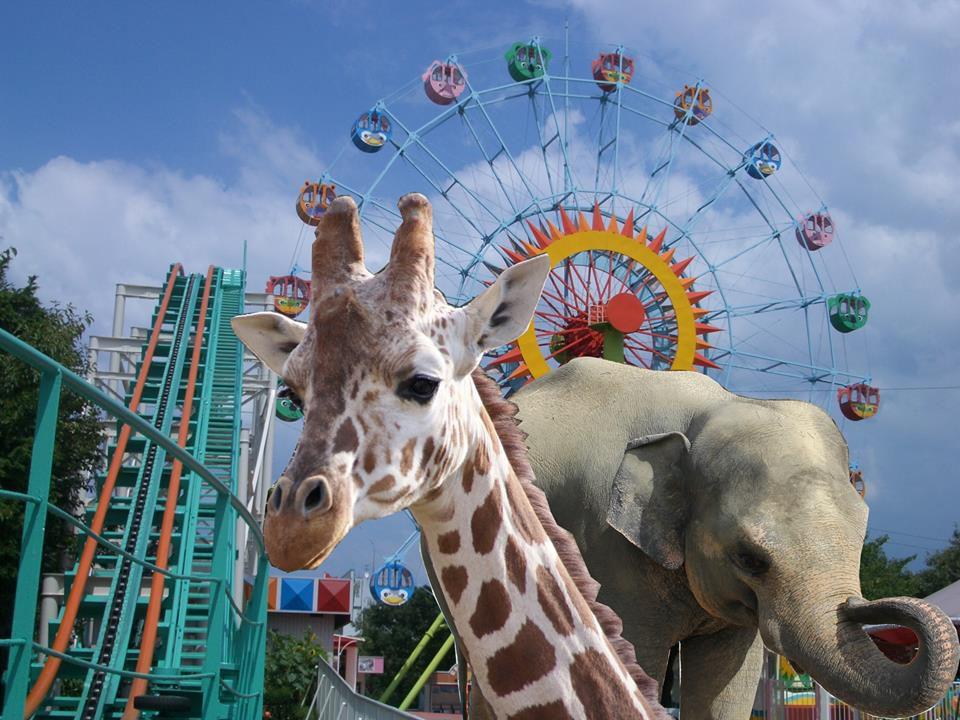 สวนสัตว์และสวนพฤษศาสตร์ฮิกาชิยาม่า (Higashiyama Zoo & Botanical Gardens) | ที่เที่ยว นาโกย่า (Nagoya)
