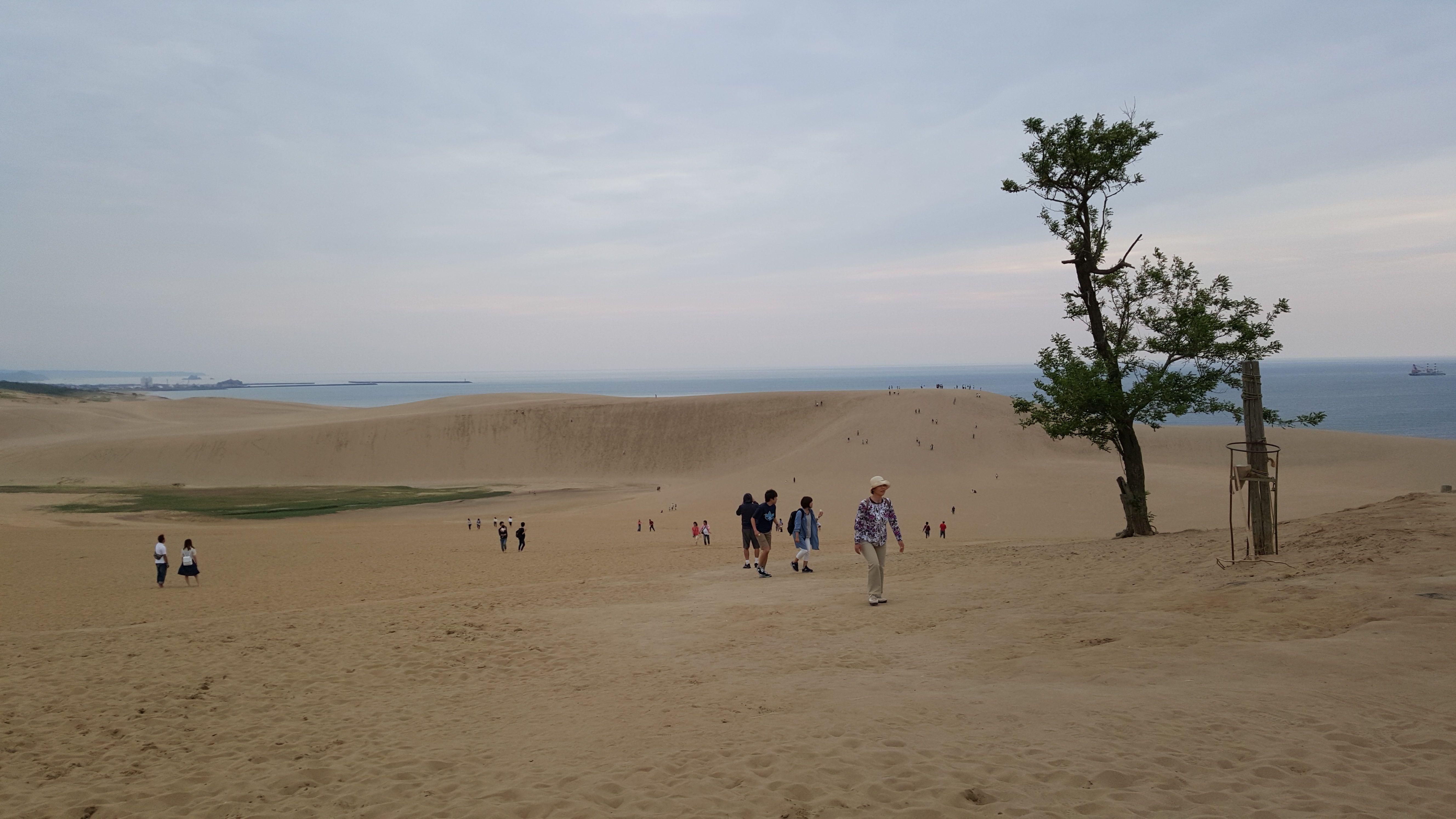 The Tottori Sand Dunes ทะเลทรายญี่ปุ่น