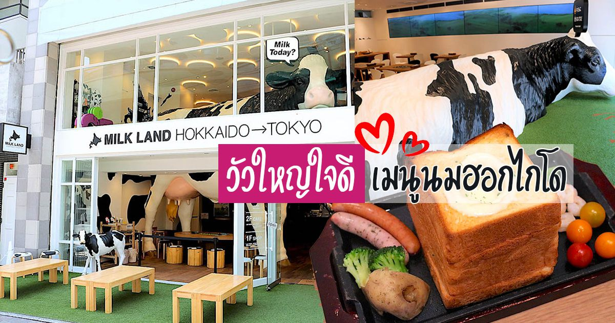 MILKLAND-HOKKAIDO-Toyko