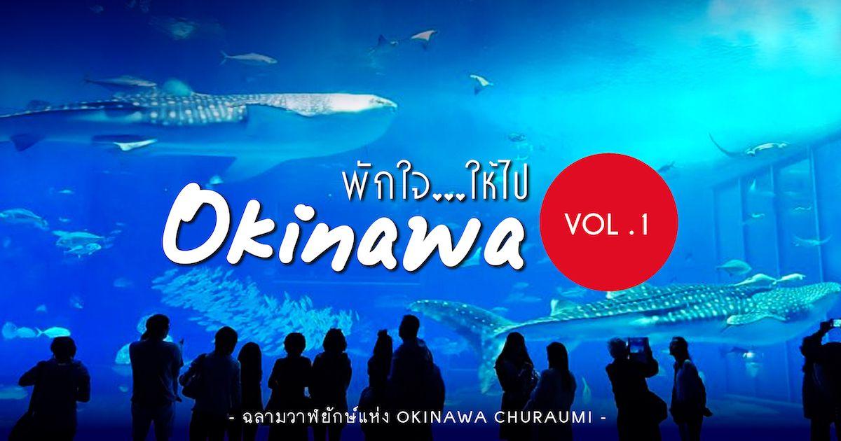 ฉลามวาฬยักษ์แห่ง Okinawa Churaumi Aquarium