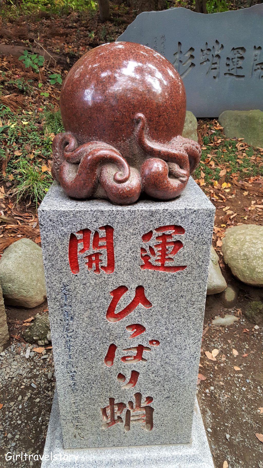 ปลาหมึกนำโชค หรือที่ชาวญี่ปุ่นเรียกว่า ไคอุง ฮิปปาริ ดาโกะ (Kaiun Hippari Dako)