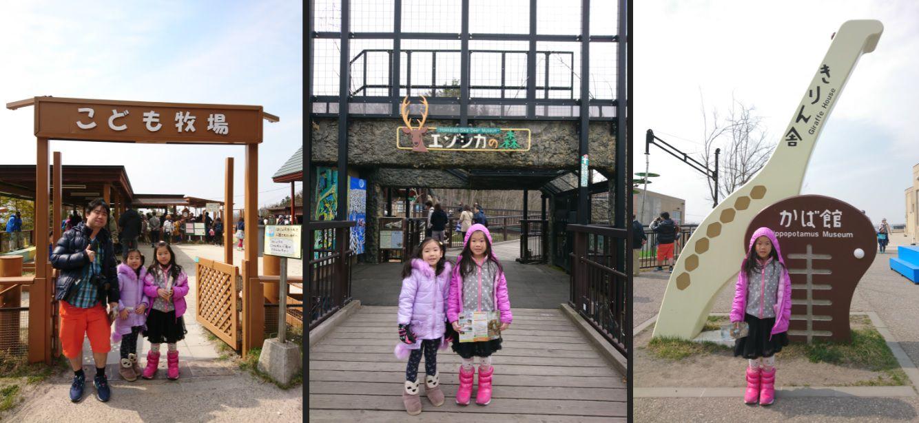 สวนสัตว์อะซาฮิยาม่า (Asahiyama Zoo) ส่องสัตว์ พาลูกเที่ยวญี่ปุ่น