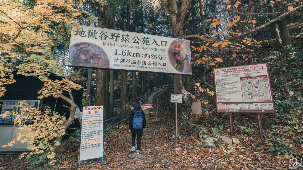 อุทยานลิง Snow monkey park