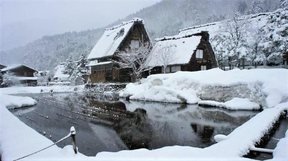 มรดกโลกญี่ปุ่น(UNESCO) เที่ยวหมู่บ้านชิราคาวาโกะ Shirakawa ช่วงหน้าร้อนที่นาโกย่า