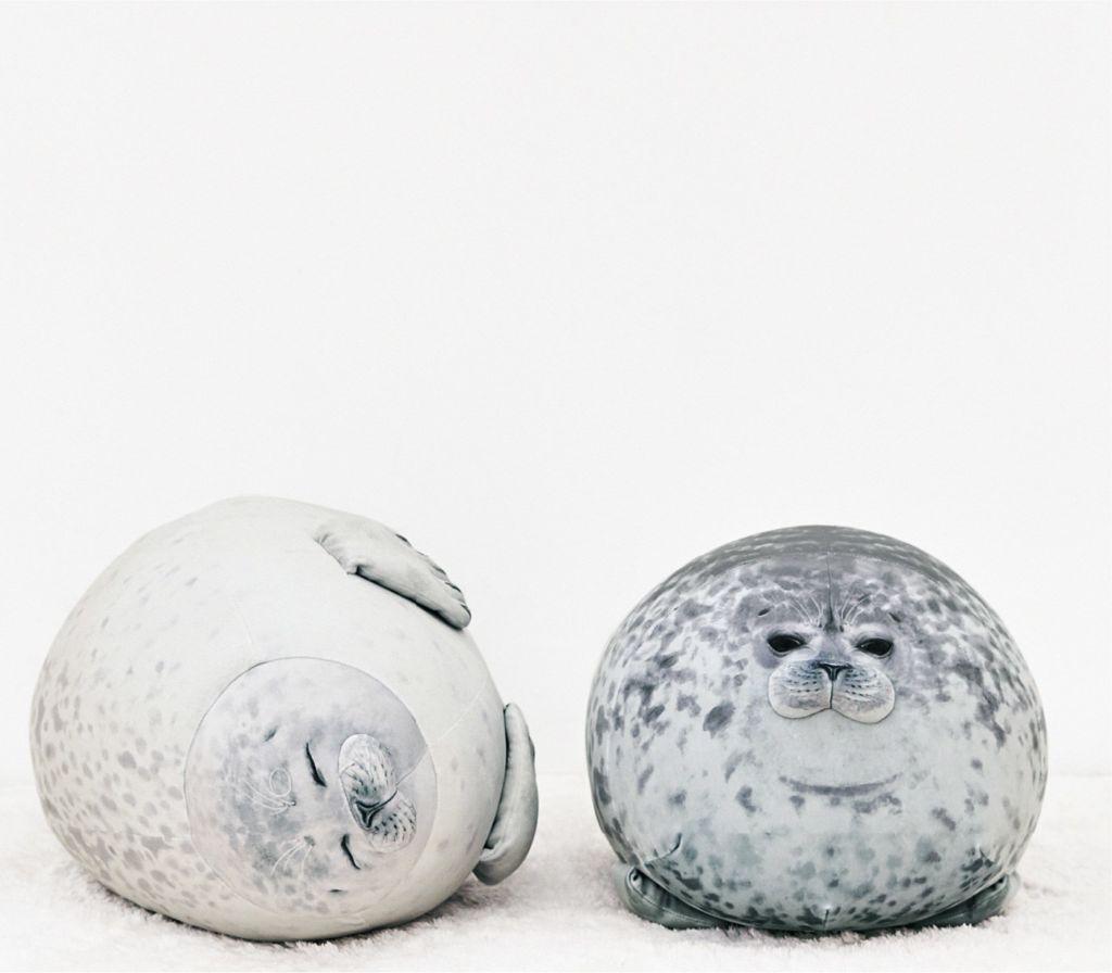 หมอนอิงแมวน้ำ อุ๋งอุ๋ง ของพิพิธภัณฑ์สัตว์น้ำไคยูคัง โอซาก้า