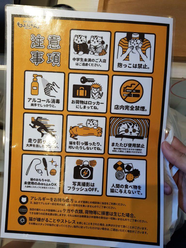 ข้อปฏิบัติ คาเฟ่แมวขาสั้น โมฟุเนี๊ยง โตเกียว