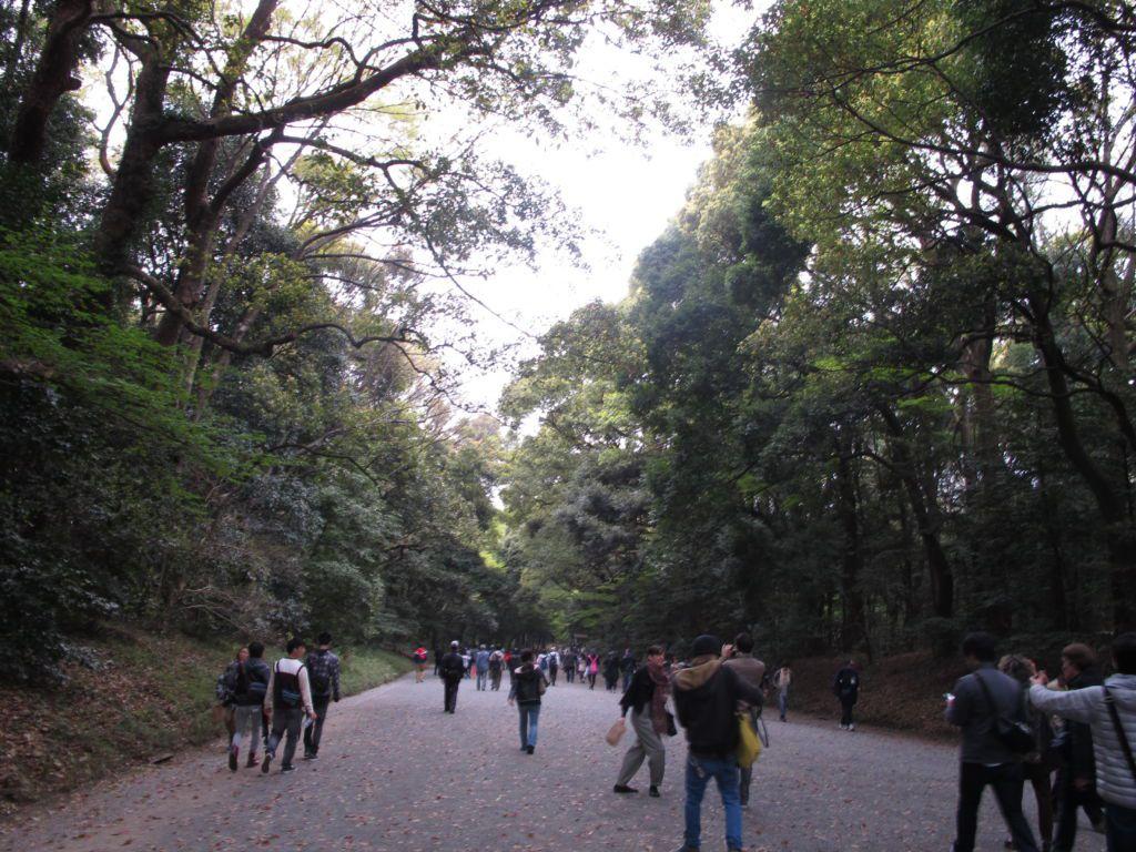 ทางเข้าวัดเมจิ ย่านฮาราจูกุ โตเกียว
