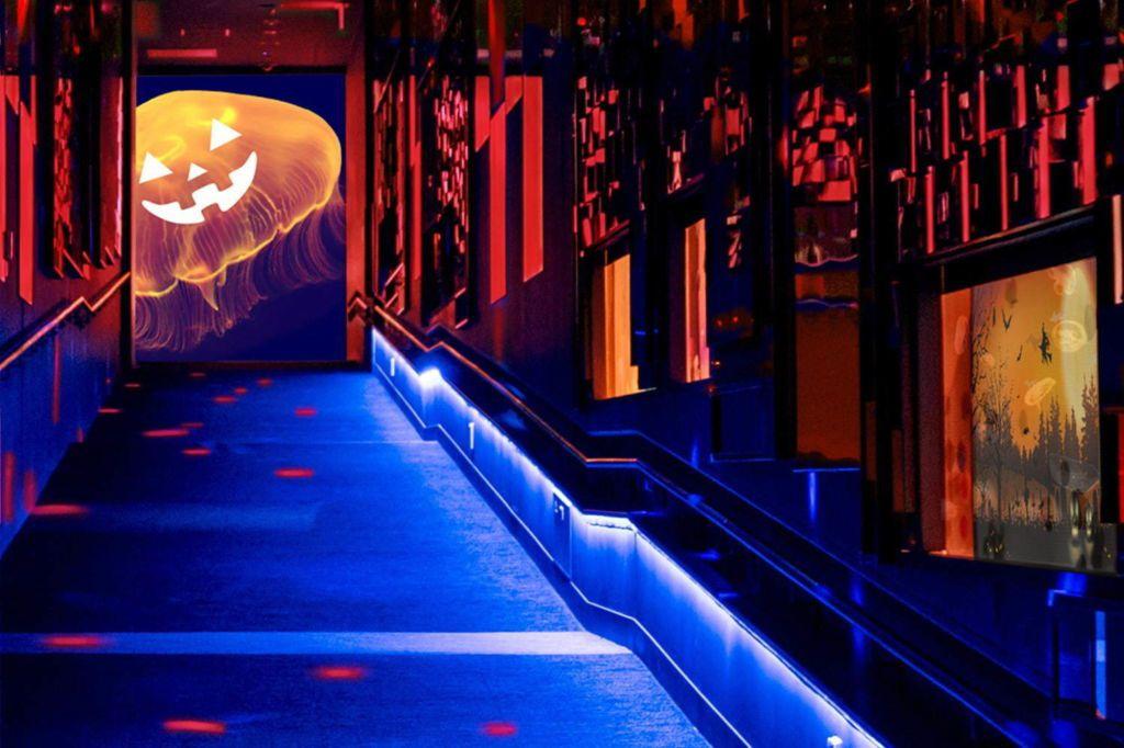 """พิพิธภัณฑ์สัตว์น้ำซุมิดะ """"Sumida Aquarium"""" จะจัดแสดง """"แมงกะพรุนกับวันฮาโลวีน"""""""
