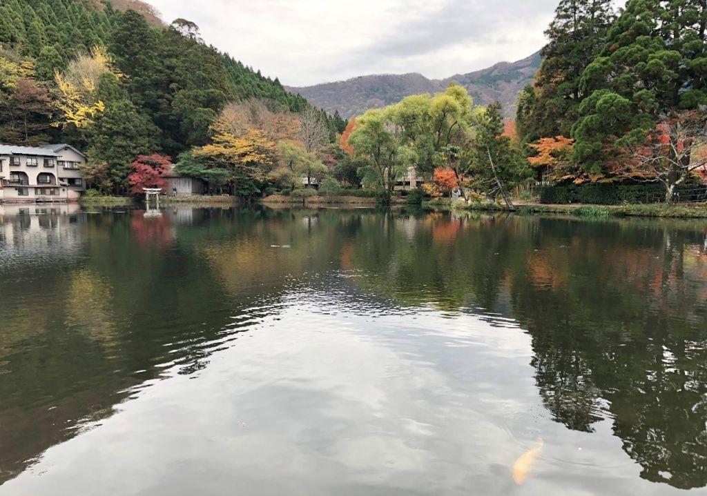 ทะเลสาบคินรินโกะ (Kinrin Lake) เมืองยูฟุอิน (Yufuin)