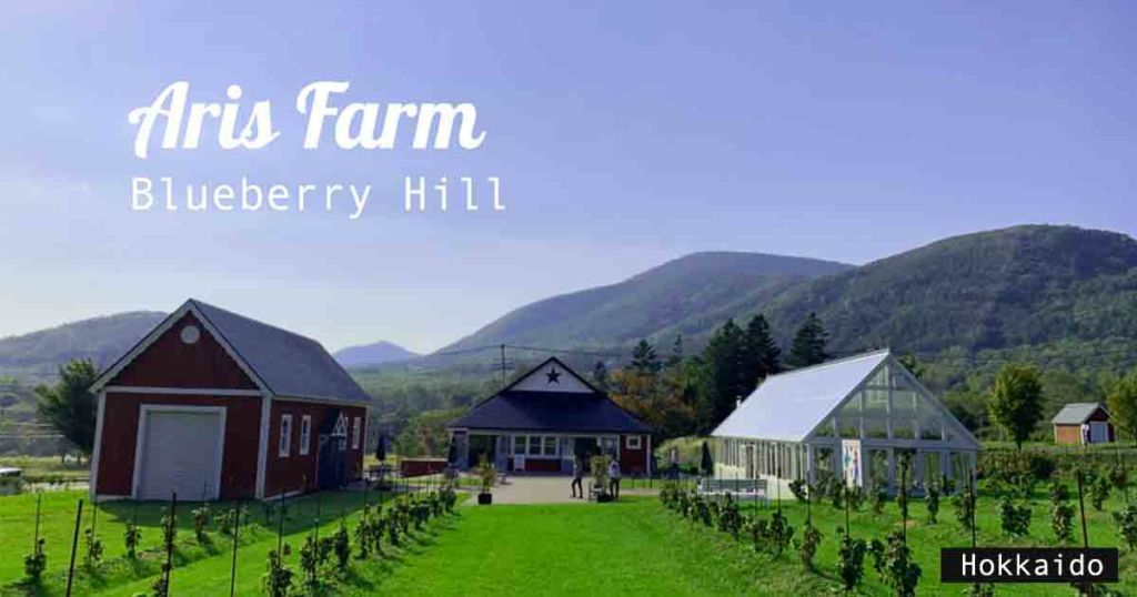 Aris-Farm-Blueberry-Hill