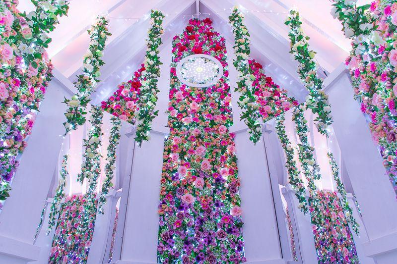 Flower Fantasy 2019 งานประดับไฟ illumination สุดอลังการในฤดูหนาว