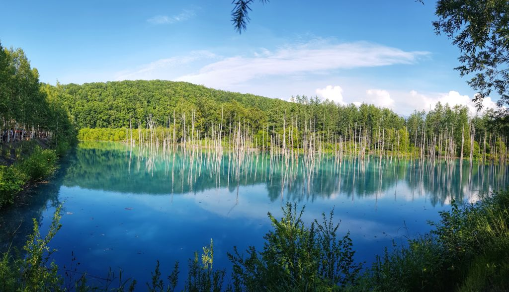บ่อน้ำสีฟ้า Blue Pond ที่ฮอกไกโด