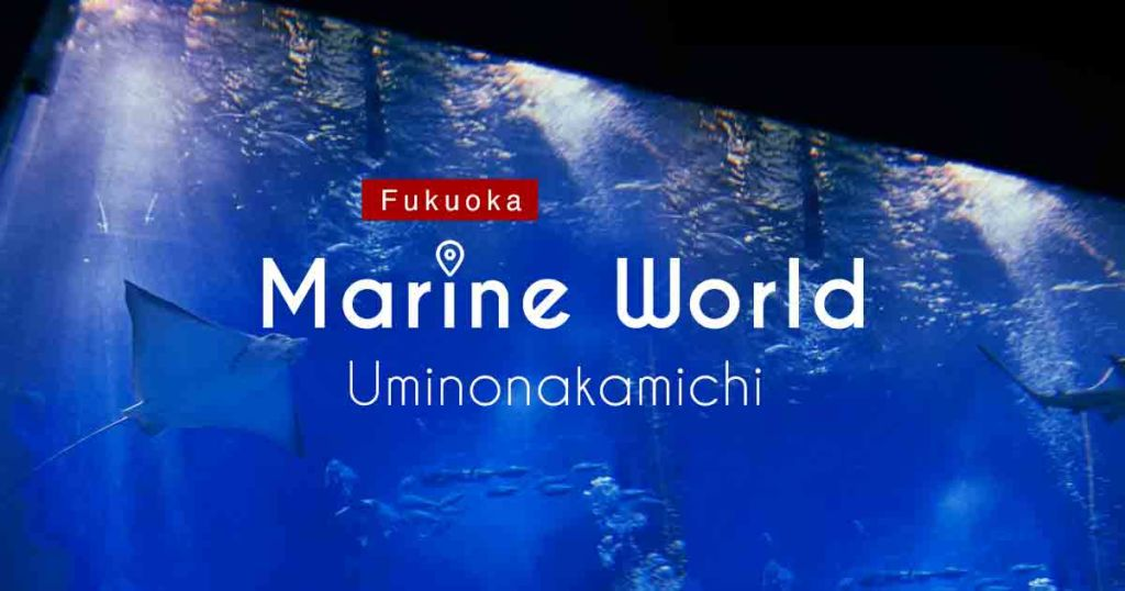 uminonakamichi-marine-world