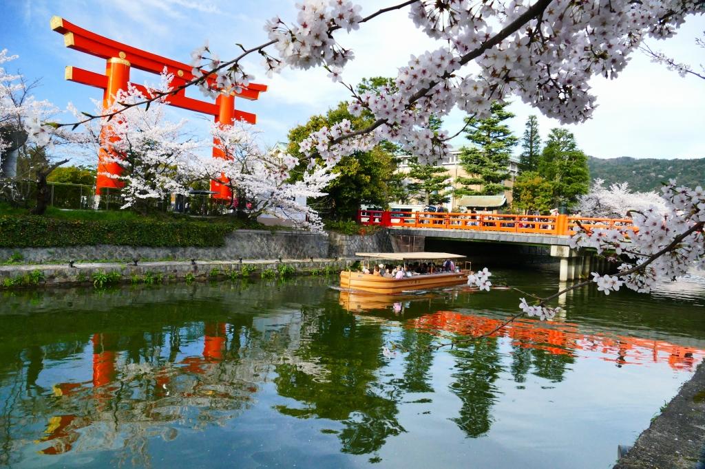 คลองโอคาซากิ (Okazaki Canal | 岡崎疏水) 15 จุดชมซากุระต้องห้ามพลาดในเกียวโต (Kyoto)