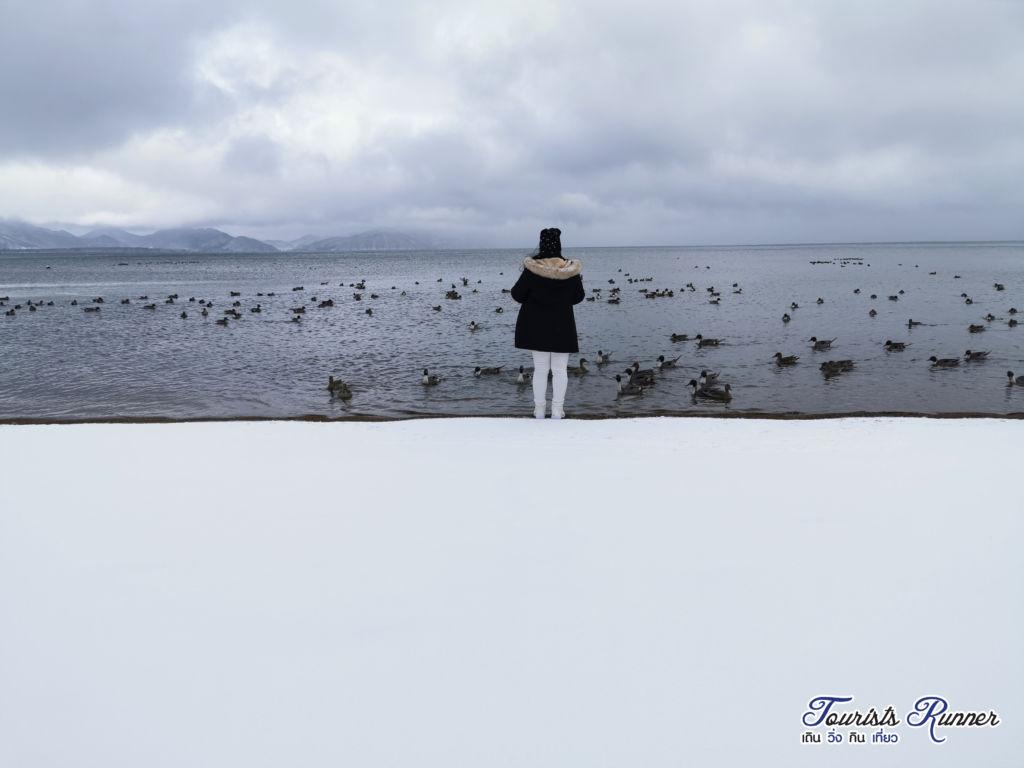 ทะเลสาบอินะวะชิโระ (Inawashiro Lake)หรือที่เรียกกันทะเลสาบหงส์