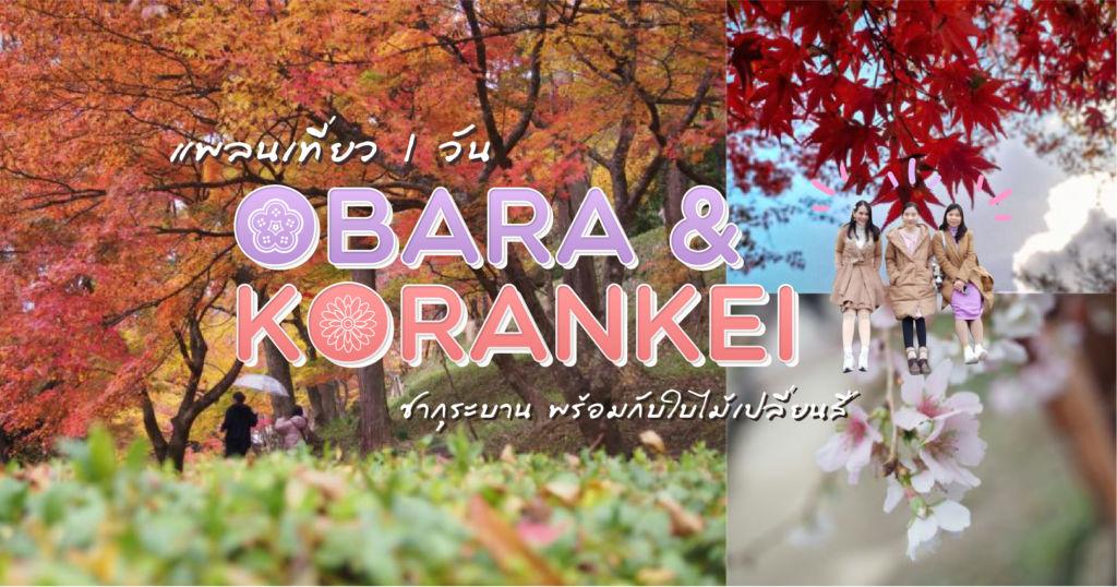 แพลนเที่ยว 1 วัน Obara & Korankei : ซากุระบาน พร้อมกับใบไม้เปลี่ยนสี