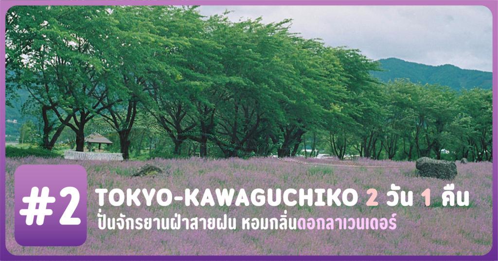 [Tokyo-Kawaguchiko 2 วัน 1 คืน] #2 ปั่นจักรยานฝ่าสายฝน หอมกลิ่นดอกลาเวนเดอร์