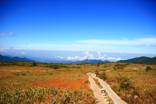 พื้นที่มหัศจรรย์ มิดะกาฮาระ, ไดนิจิไดระ