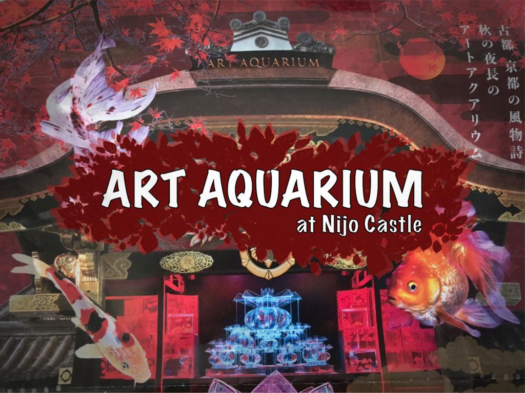Art Aquarium at Nijo Castle