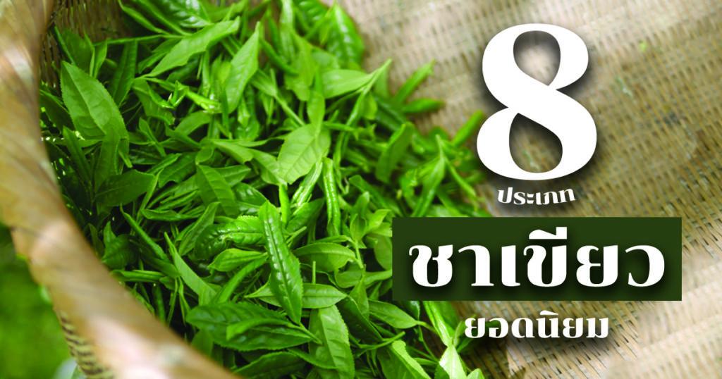 8 ชาเขียวญี่ปุ่นยอดนิยม