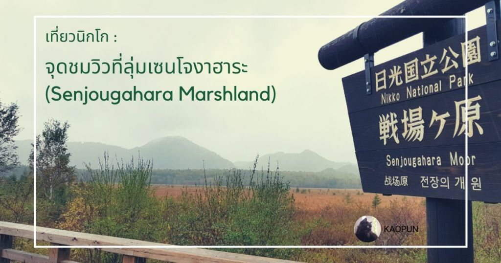 เที่ยวนิกโก : จุดชมวิวที่ลุ่มเซนโจงาฮาระ (Senjougahara Marshland)