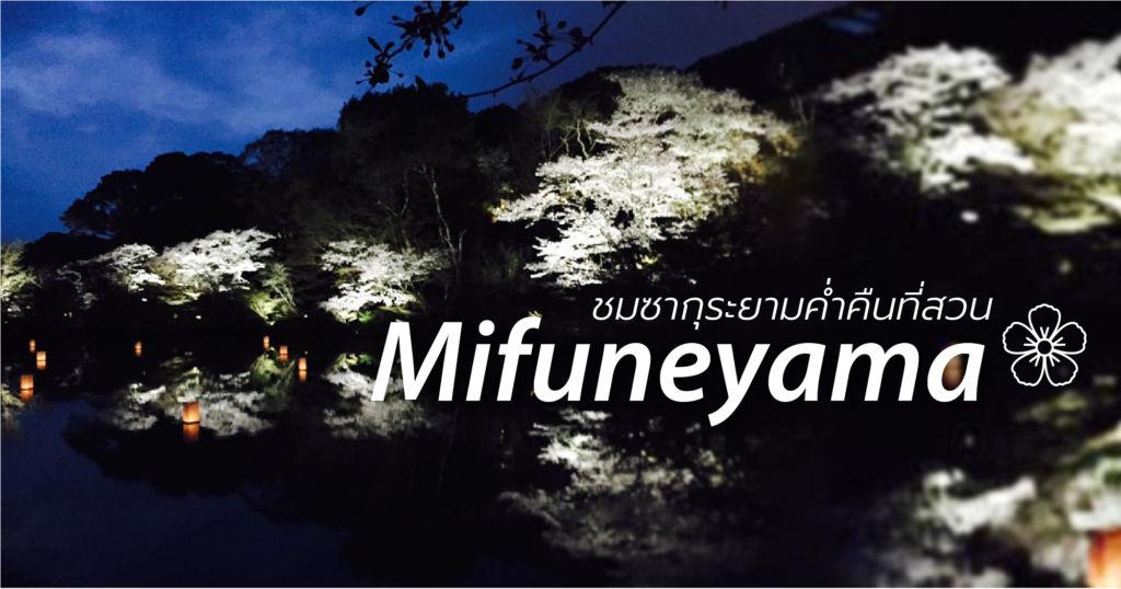 ชมซากุระยามค่ำคืนที่สวน Mifuneyama