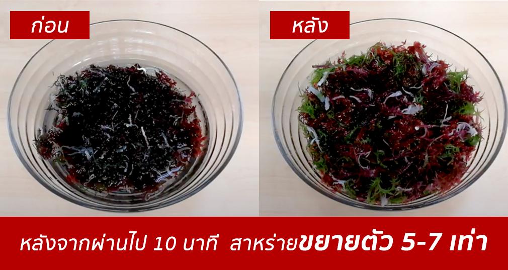 Kaiso seaweed สาหร่ายทะเลญี่ปุ่นอบเเห้ง